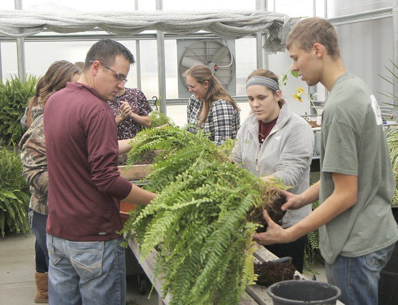 Despite the cold outside A slice of summer inside Greenhouses provide experience for area students